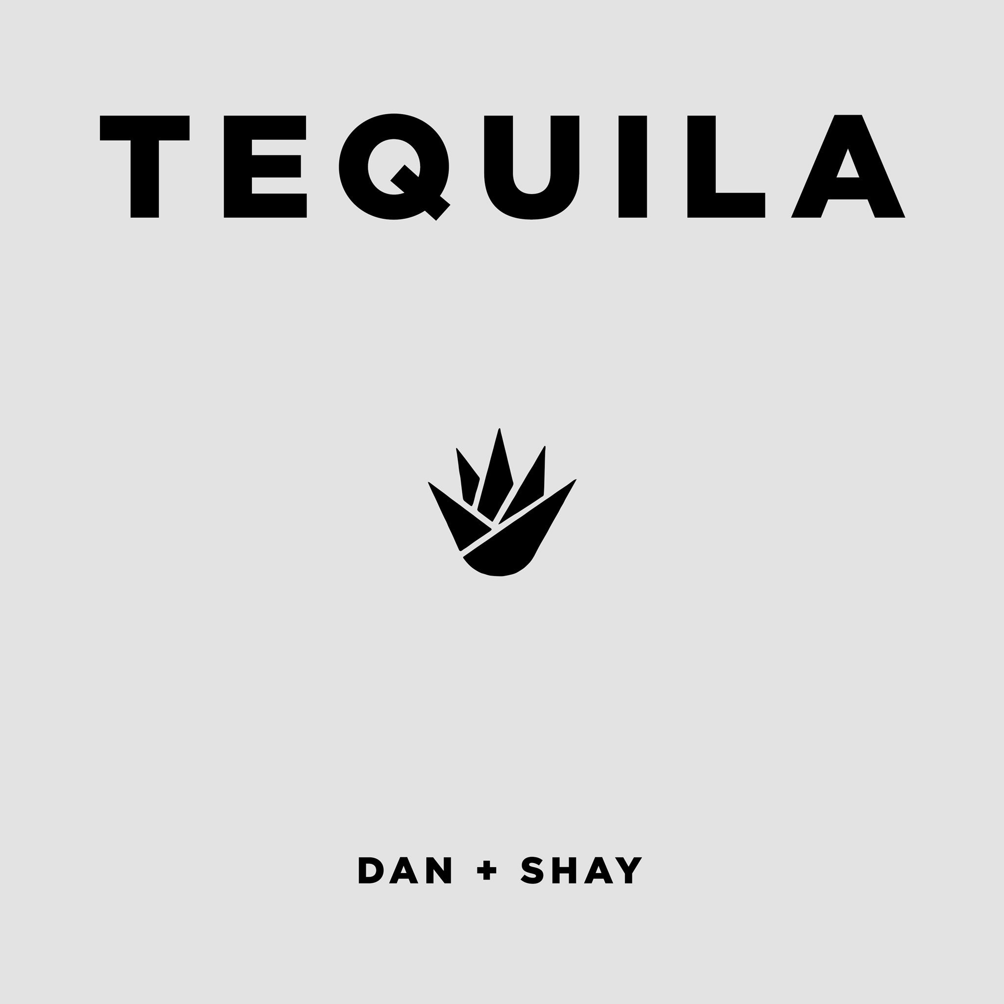 """Dan + Shay Release Nostalgia-Soaked New Single """"Tequila"""
